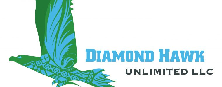 Diamond Hawk logo
